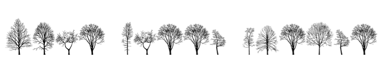 NYC trees font by Katie Holden 'More Trees Please' on Ashley Kalagian Blunt