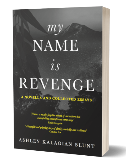 My Name Is Revenge book cover