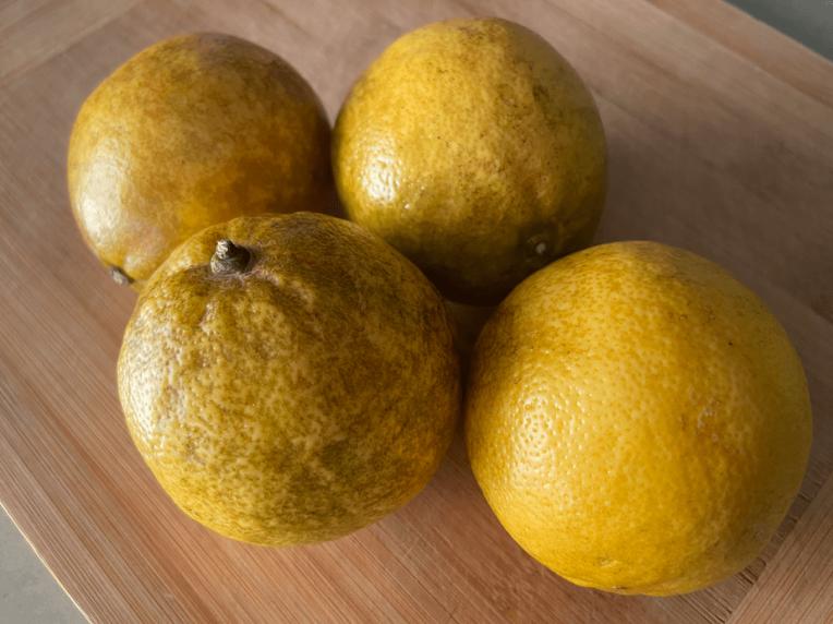 4 Lemona