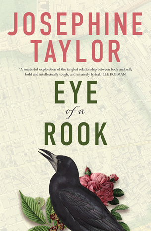 Josephine Taylor Eye of a Rook book cover